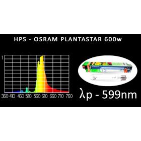 Osram Plantastar 600w HPS
