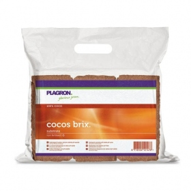 Plagron Coco Brix x 6 pcs