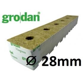 Grodan StartBlock ⌀ 28mm (x12pcs)