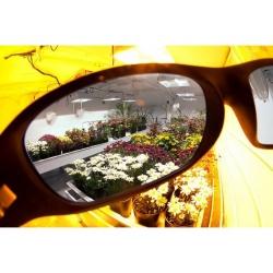 Growroom Lenses Lumii