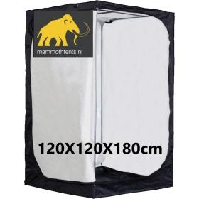 Mammoth Ivory 120
