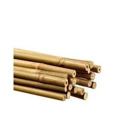 Bamboo 120cm Ø 8mm