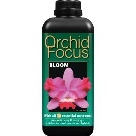 Orchids Focus Bloom 1ltr