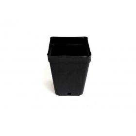 Square Pot 1 ltr (11x11xh12cm)