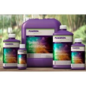 Plagron Green Sensation 250ml