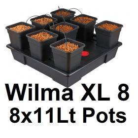 Wilma XL 8 Plantes 11Lt  90x90 cm