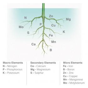 Engrais minéral